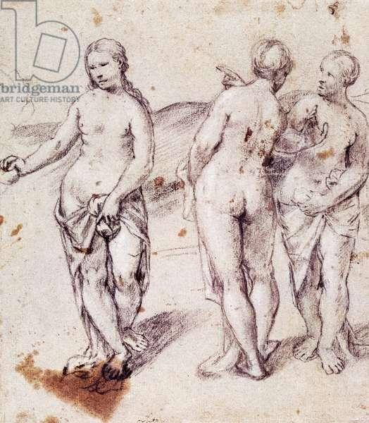 The Judgment of Paris, drawing by Girolamo Romano known as Romanino (ca 1484-1560), Italy, 16th century