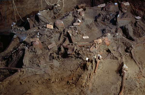 Skeletons uncovered in the port area, Herculaneum (UNESCO World Heritage List, 1997), Campania, Italy. Roman civilization