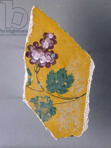 Pictorial decoration of bunch of grapes, fragment, House of Golden Bracelet, Pompeii, Campania, Italy, Roman civilization, 1st century AD
