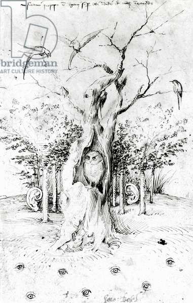 The Forest that hears and the field that sees, by Hieronymus Bosch (1450-1516), drawing, 15th-16th century
