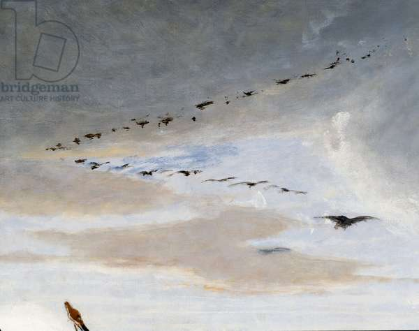 Birds in V formation, detail from The Triumph of Marius, painting by Francesco Saverio Altamura (1822-1897), oil on canvas, 234x352 cm, Italy, 19th century