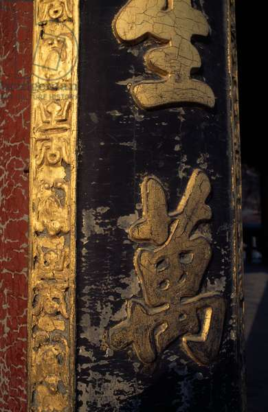 Gilt wood reliefs, Summer palace (Unesco World Heritage List, 1998), Beijing,  China, 18th-19th century (photo)