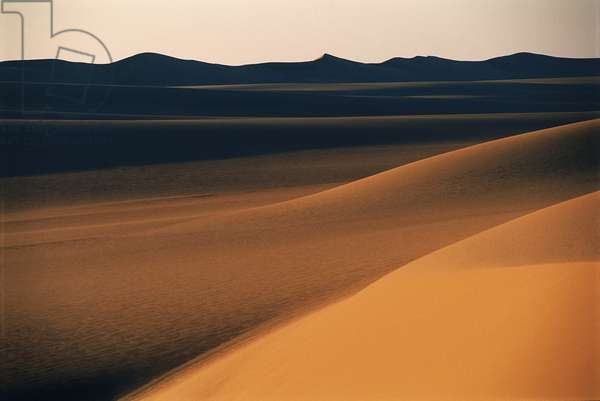 Panoramic view of sand dunes in the desert; Libyan Desert; Sahara Desert; Egypt (photo)
