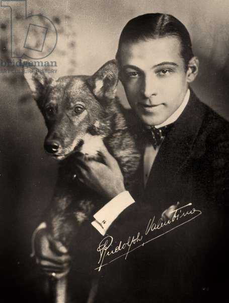 Portrait of Rudolph Valentino and his dog, c.1921  (photo)
