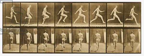 Image from  'Animal Locomotion' series, c.1887 (b/w photo)