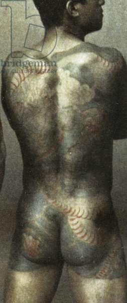Man with traditional Japanese Irezumi tattoo, c.1880 (hand coloured albumen photo) (detail of 398092)