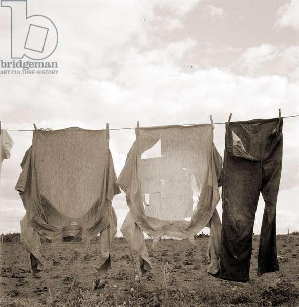 Drying clothes on Kytta farm. Western Washington, Thurston County, Michigan Hill. 1936 (b/w photo)