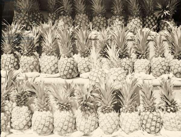 Pineapples for sale,Center Market. Washington, D.C. 1936 (b/w photo)