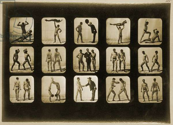 Athletes posturing, from the 'Animal Locomotion' series, c.1881 (b/w photo)