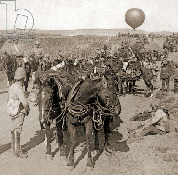 Balloon Corps transport, with Lord Roberts' army - advance on Johannesburg, South Africa, 1901 (sepia Photo)