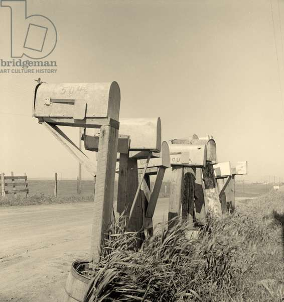 Mail boxes of lettuce workers. Settlement on outskirts of Salinas, California. 1936 (b/w photo)