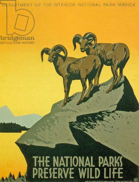 Poster promoting the biodiversity of National Parks, 1937 (screenprint)