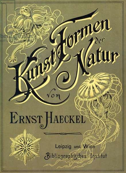 Front cover of 'Kunstformen der Natur' by Ernst Heackel, 1899 (colour litho)