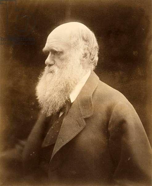 Portrait of Charles Darwin, 1868 (photo)