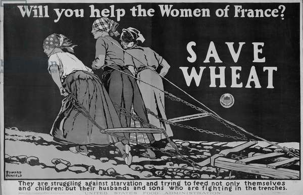 'Will you Help the Women of France?' World War One poster (litho)