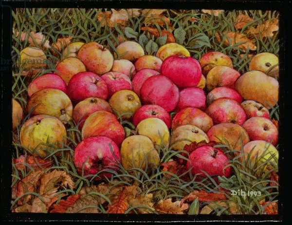 Durnitzhofer Apples, 1993