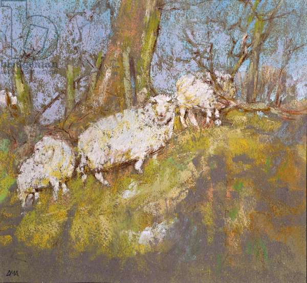 Sheep up the Bank, North Wales (pastel on paper)