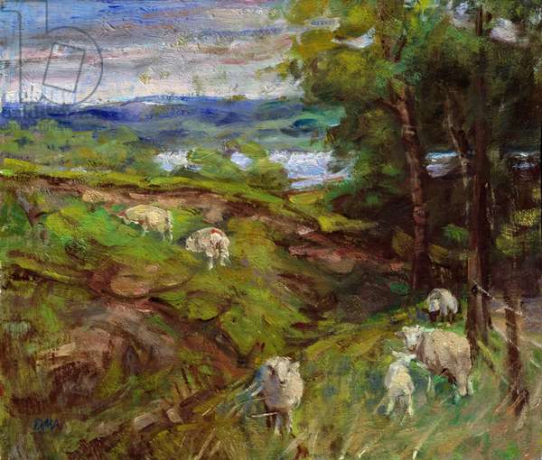 Early Summer over Llyntegid (oil on board)