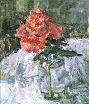 September Rose, Llwynhir, 1989