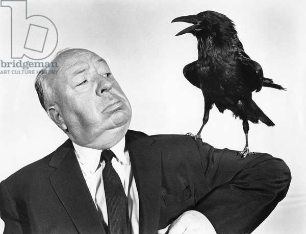 Alfred Hitchcock, The Birds 1963 Directed By Alfred Hitchcock