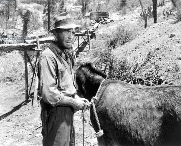 Humphrey Bogart, The Treasure Of The Sierra Madre 1948 Directed By John Huston