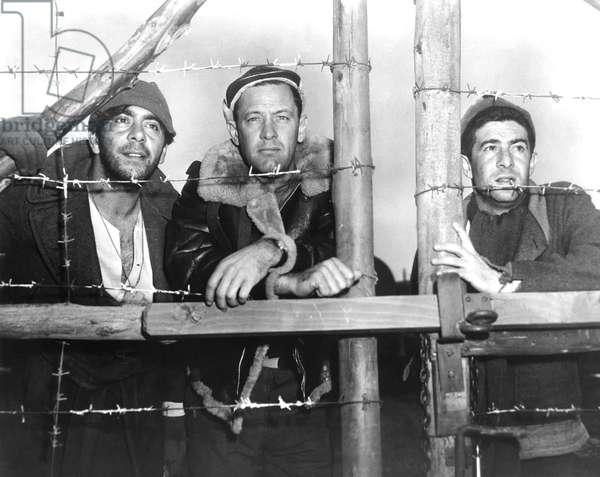 Robert Strauss, William Holden And Harvey Lembeck.