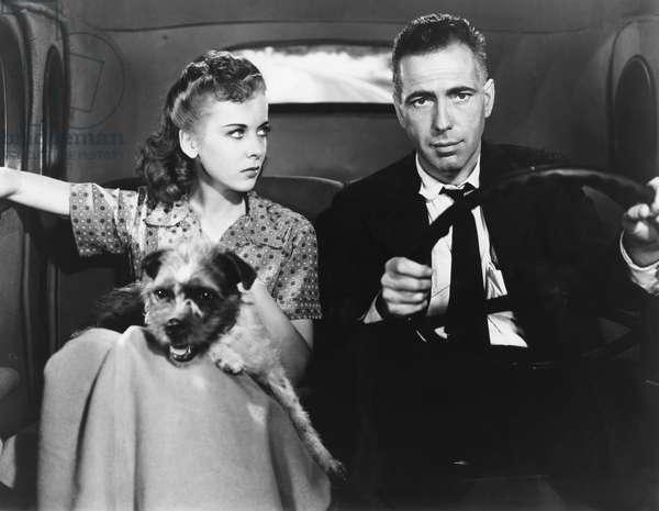 High Sierra - La grande evasion 1941 directed by Raoul Walsh; Warner Bros. Pictures; Ida Lupino; Humphrey Bogart