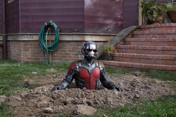 Ant-Man 2015 (17)