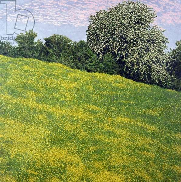 Buttercup Field, Clyro, 1996 (oil on canvas)