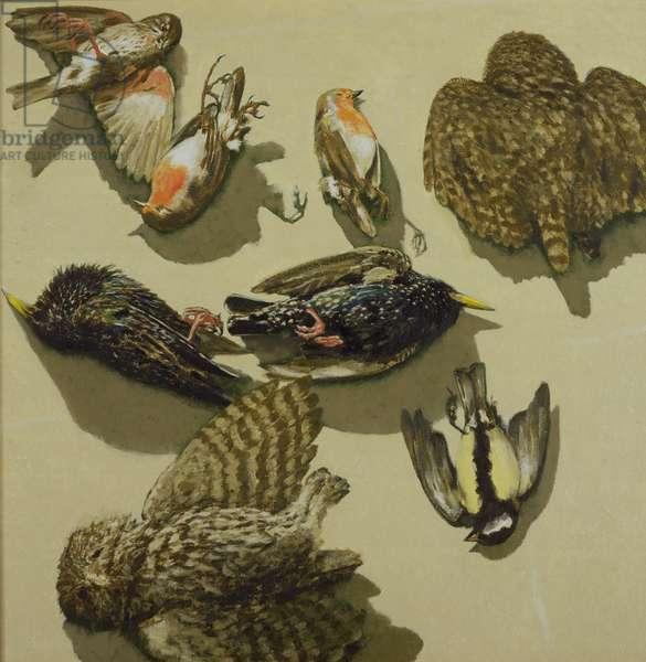 Dead Birds, 1997-99 (oil on canvas)