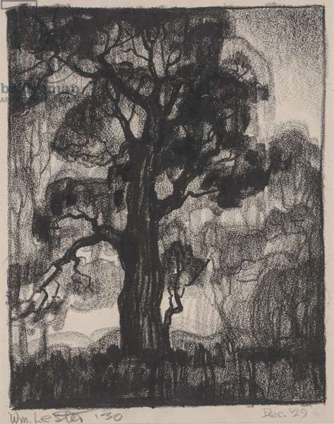 Through the Trees, 1930 (lithographic crayon)