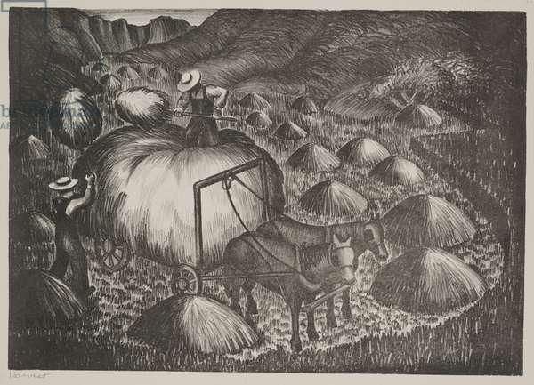 Harvest (litho)