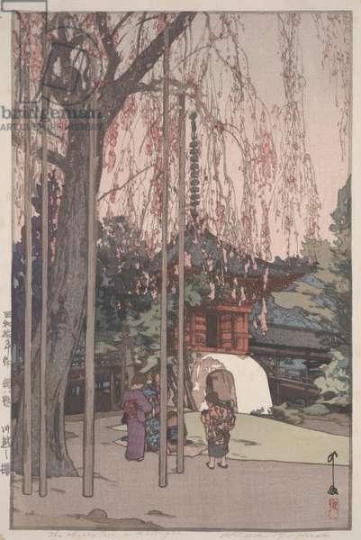 The Cherry Tree at Kawagoe, 1935 (polychrome woodblock print)