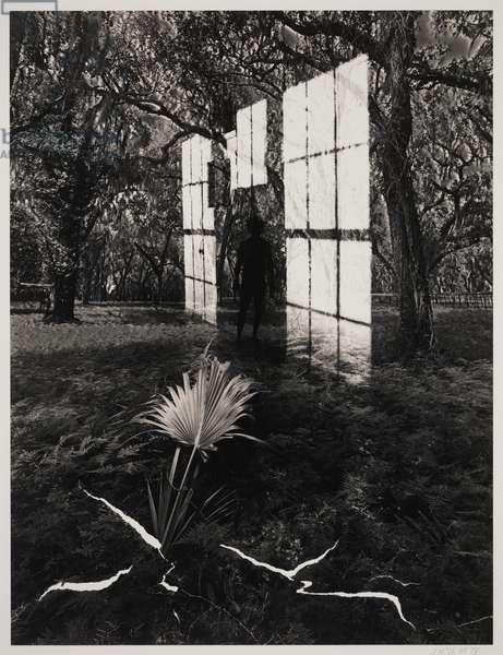 Untitled, 1978 (gelatin silver print with selenium & sepia toners)