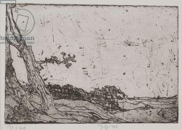 Landschaften - Geestrueken, 1970 (etching)