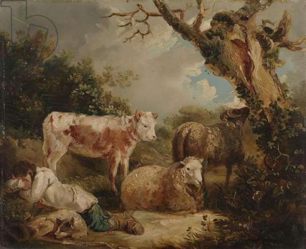 The Shepherd's Rest (oil on board)