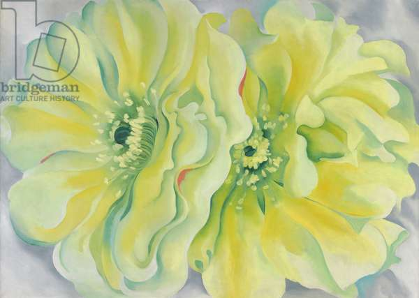 Yellow Cactus, 1929 (oil on canvas)