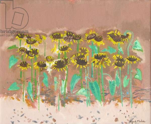 Sunflowers (oil on canvas)