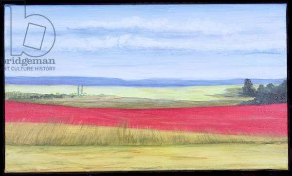 Poppy Field (oil on canvas)
