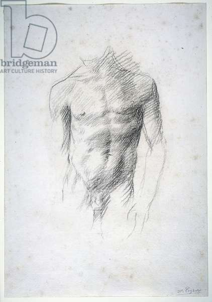 Male Nude (black chalk on paper)