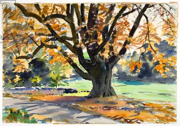 Fall Foliage (w/c on paper)