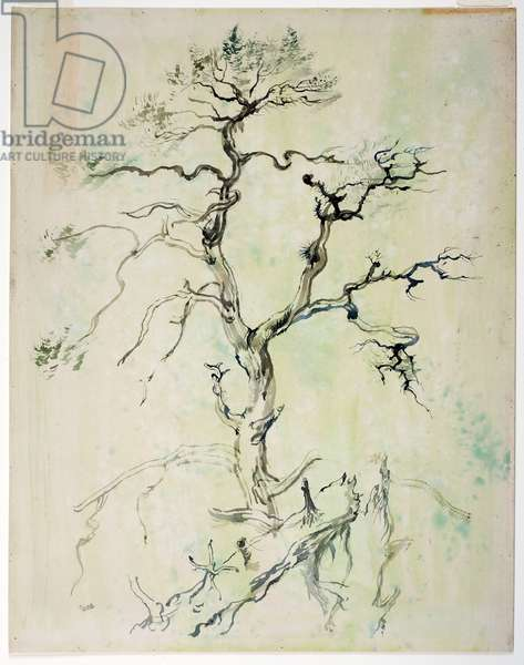 Untitled (Tree), 1935-37 (brush and brown, grey & Chinese inks and w/c)
