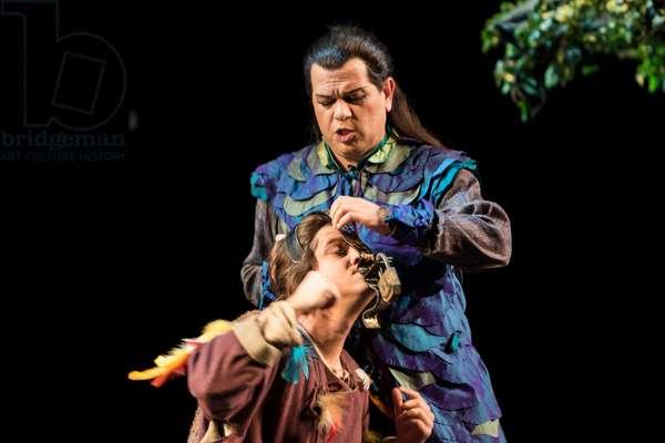 The Magic Flute (photo)