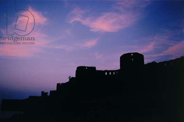 Sea fort (photo)