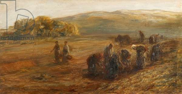 Lifting Potatoes, 19th century (oil on canvas)