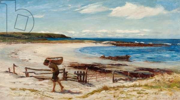 On the East Coast of Scotland, 19th century (oil on canvas)