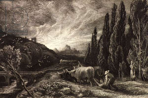 The Early Ploughman, 1868 (etching)