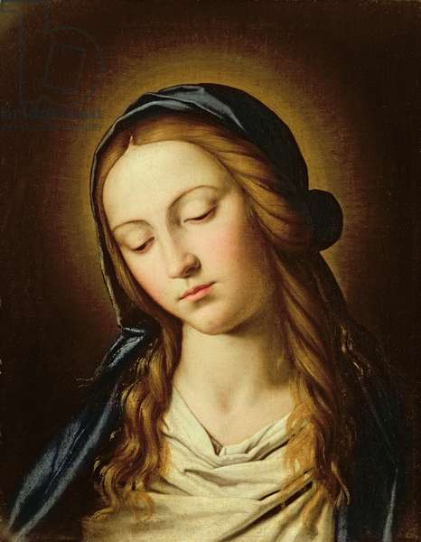 Head of the Madonna (oil on canvas)