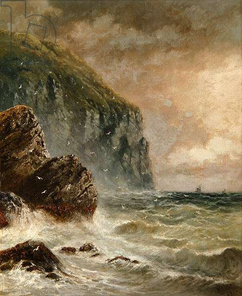 Seascape with Cliff, 1889 (oil on canvas)