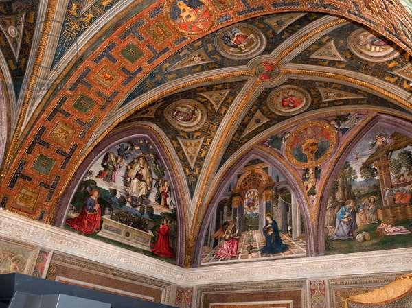 Assumption of the Virgin, Annunciation and Nativity, 1492-94 (fresco)